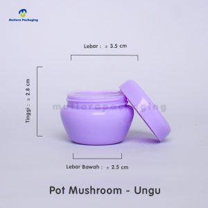 POT MUSHROOM 10GR UNGU